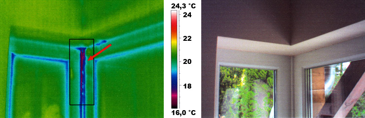 Thermographiebild